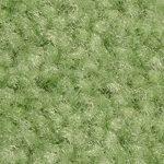 Jalapeno DK Primo Series Event Carpet